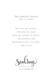 The Peaceful Forest - Card
