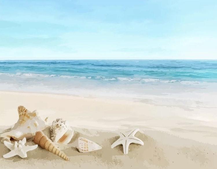 Strand med snäckor