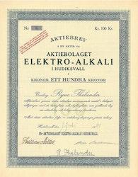 Elektro-Alkali i Hudiksvall