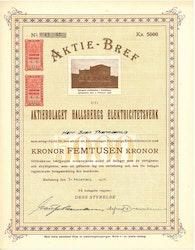 Hallsbergs Elektricitetsverk, AB, 5 000 kr