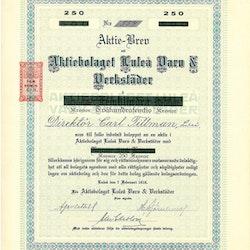 Luleå Varv & Verkstäder, AB, 250 kr, 1918