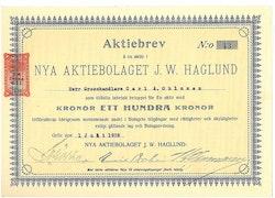 Nya AB J.W. Haglund, 100 kr