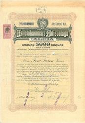 Hallstahammars AB, 5 %, 5000 kr