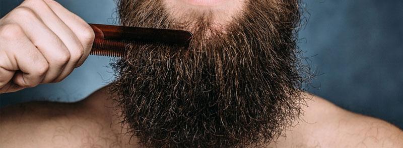 Skäggborste eller skäggkam?