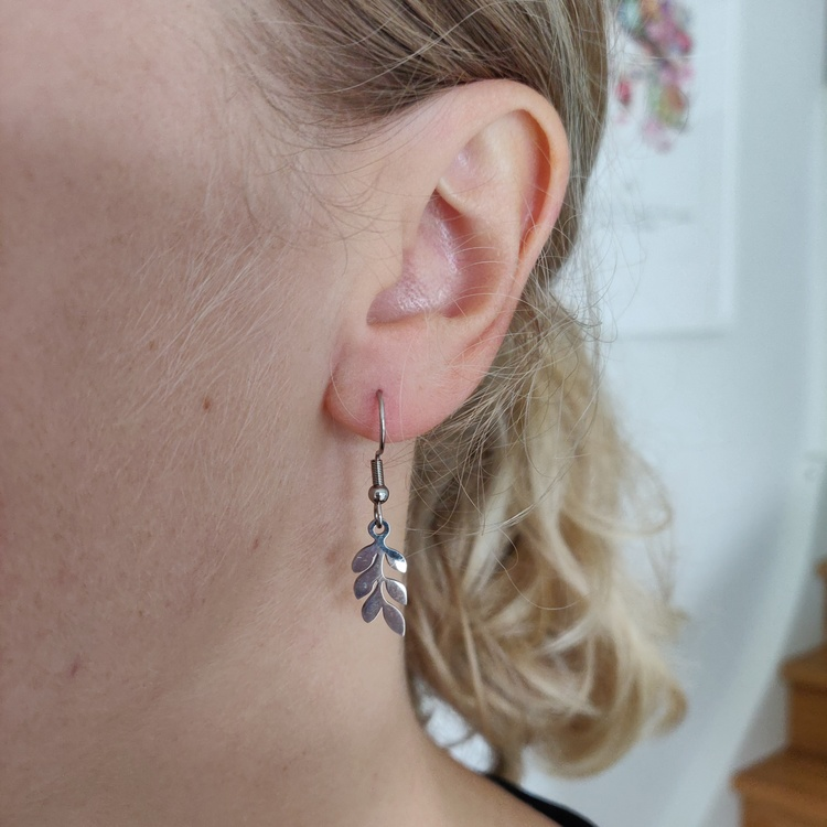 Örhängen - örkrokar i rostfritt stål