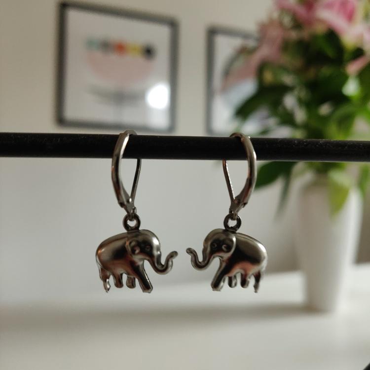 Örhängen - brisyrer i rostfritt stål