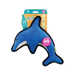 David the Dolphin