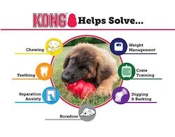KONG Bounzer, large