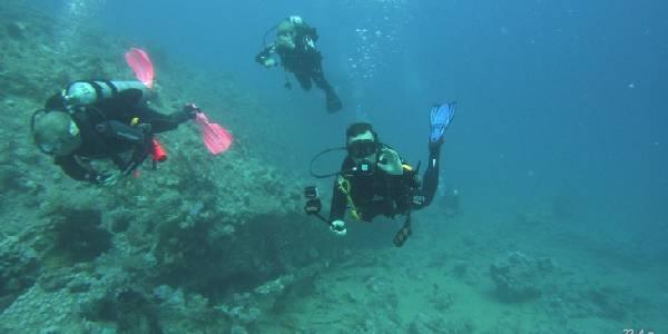 Semester dykning
