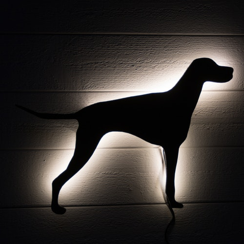Wall light Hungarian Vizsla