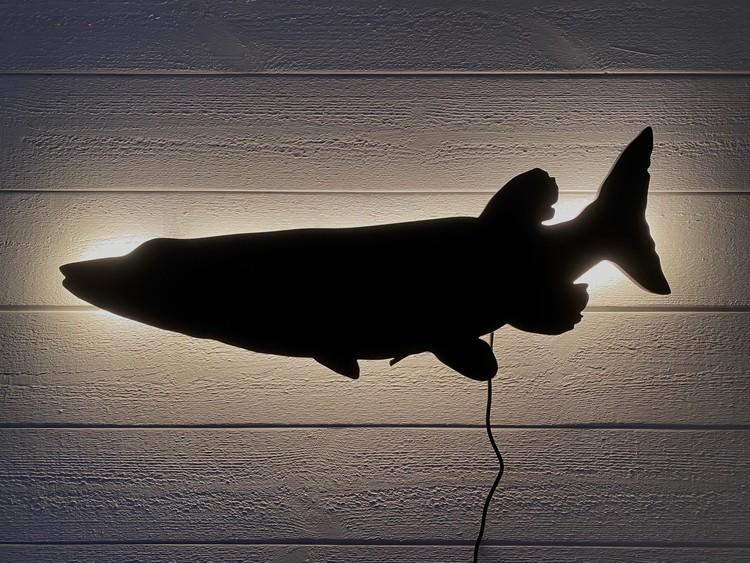 Vägglampa Fisk - Gädda lekande