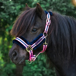 Jacson - Grimma Pony Pals