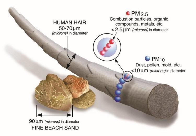 5 st Filter för andningsskydd, skyddar mot virus bakterier m.m. MP 2.5 FFP2 N95 (labbtestade motsvarar N99 FFP3 nivåer) för neopren masker med 2 ventiler