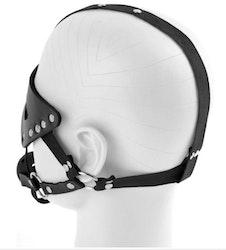 Masquerade Mask & Gag Restraint