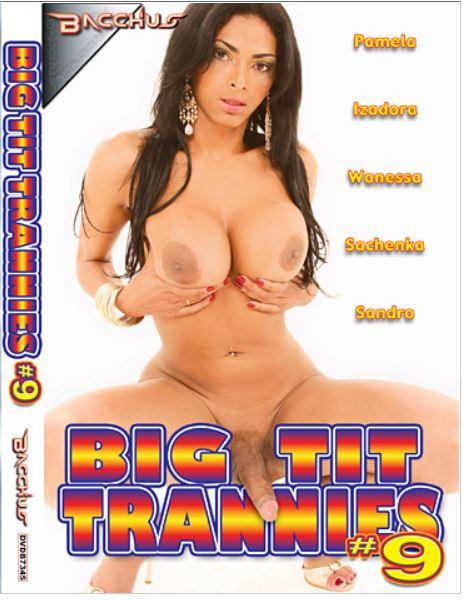 Big Tit Trannies 9