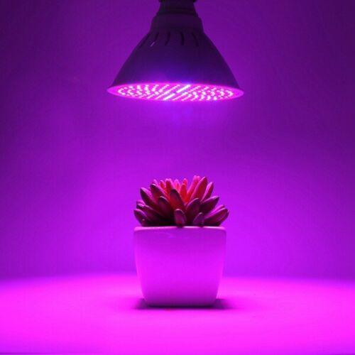 LED Växtlampa med Nasa Teknologi E27 200 LED