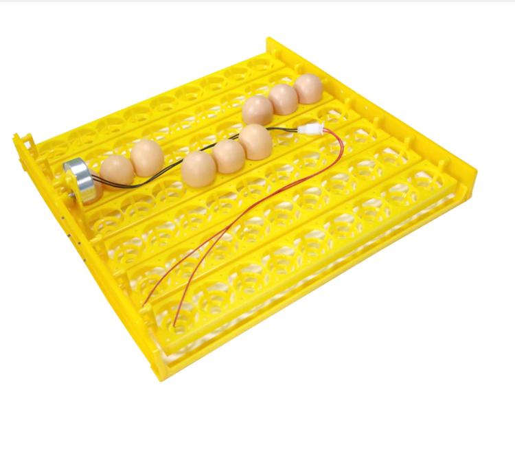 Äggkläckningsmaskin inkubator - 63 ägg