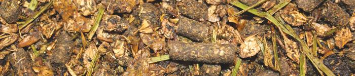 NaturMüsli med örter 20 kg- koncentrerat kompletteringsfoder, där hästen tillförs ett brett spektrum av viktiga näringsämnen