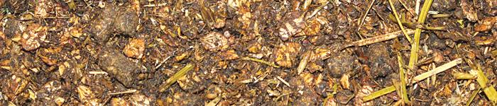 NaturMüsli SENIOR 20 kg- fiberrik müsli, lämplig till känsliga och äldre hästar, såväl som hjälp till tunna hästar att gå upp i vikt.