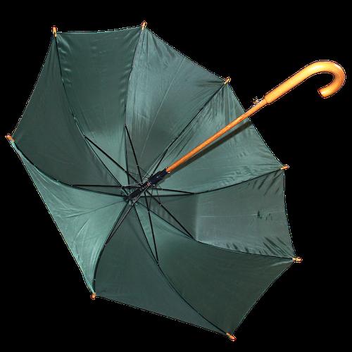 Hippolyt Paraply
