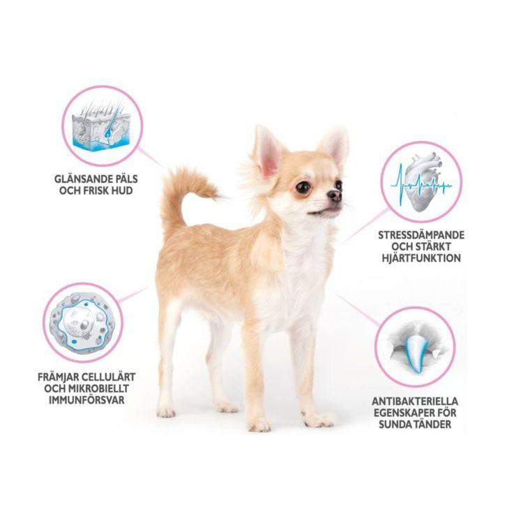 Brit Care Mini Light & Sterilised- Kanin & lax. Spannmålsfritt för överviktiga och kastrerade hundar av små raser.400 gr