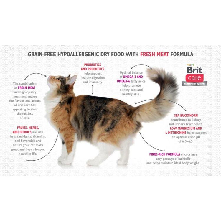 Brit Care Cat Indoor Anti-Stress Färsk kyckling- Vuxen Kattfoder - Innekatt & Antistress