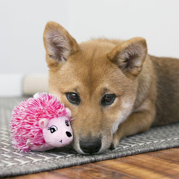 KONG Leksak Comfort HedgeHug Puppy Mix M 40cm