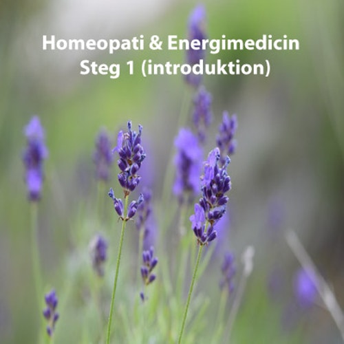 Homeopati & Energimedicin Steg 1 (introduktion)