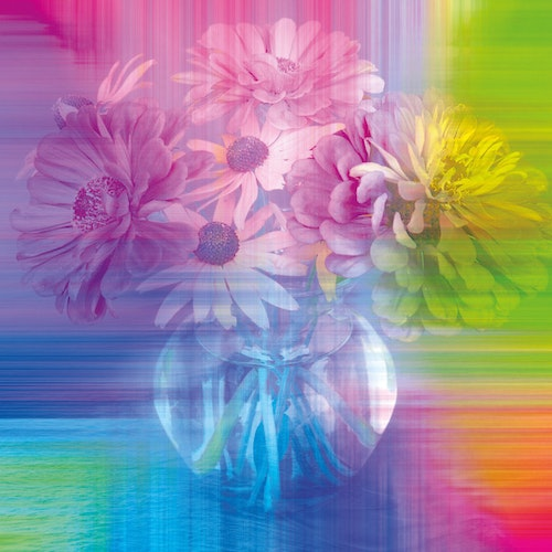 "Graphic Art ""Flower in Rainbow"""