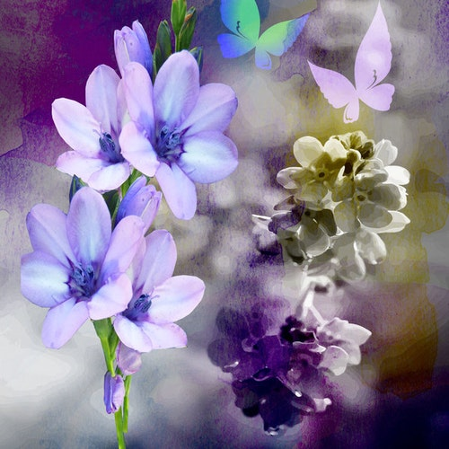 "Graphic Art ""Flowering time in purple"""