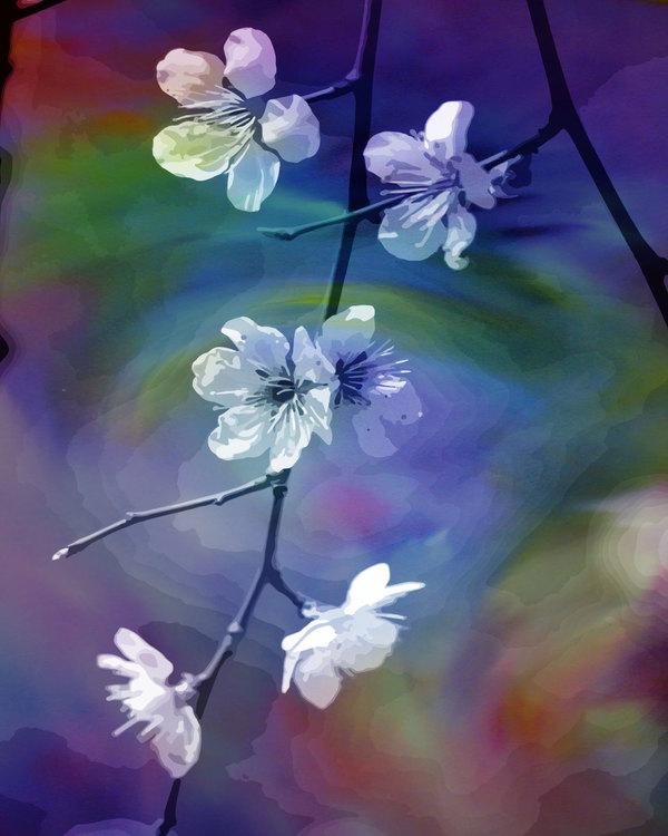 "Graohic Art ""The language of flowers"""