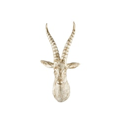 Antilop Poly