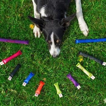Doggie-zen's minidummies