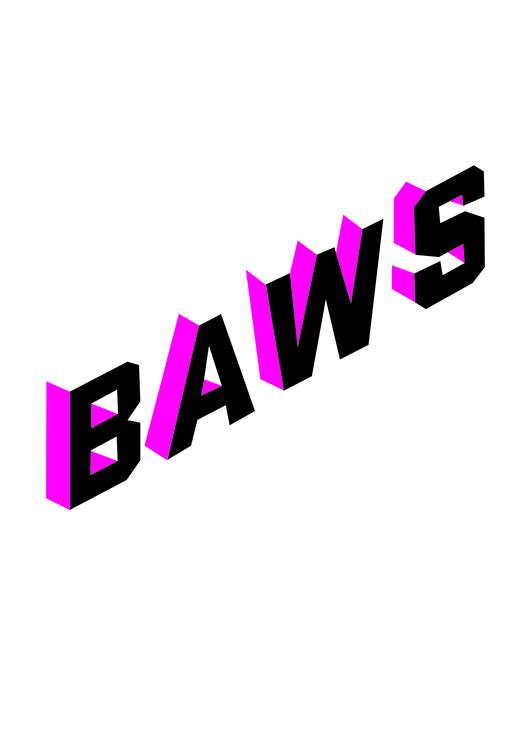 Baws hoodie (black)