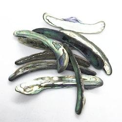 Abalone skal / Paua