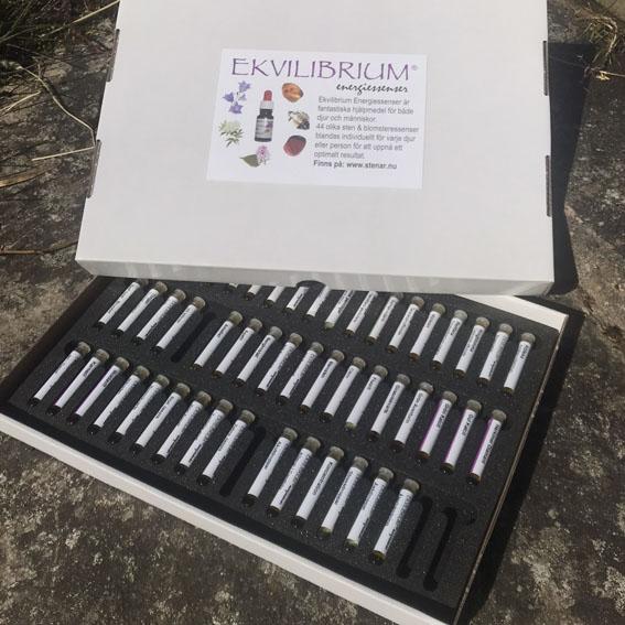 Ekvilibrium testsats