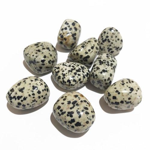 Dalmatiner porfyr