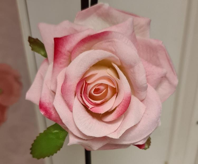Hårblomma Stor ros