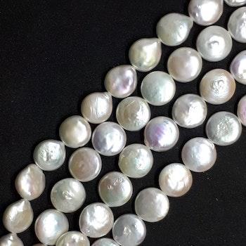 Vita myntpärlor 12-13 mm