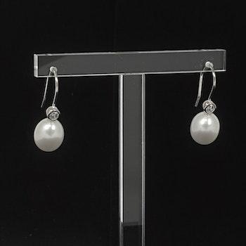 Örhängen silver med kubisk zirkon och vit pärla