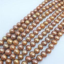 Guld bruna pärlor 8,5-9 mm