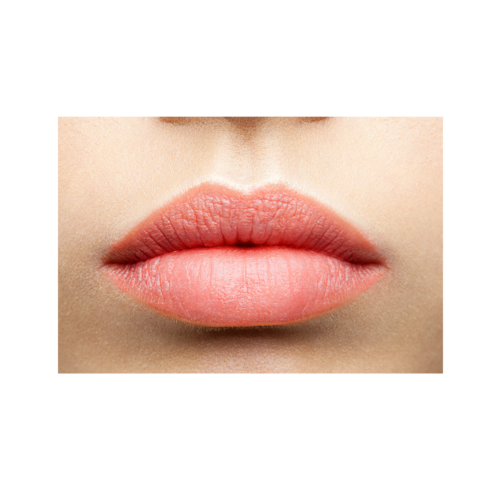Ekologiskt Läppstift - Lip Care Colour - 20 nyanser - Maria Åkerberg