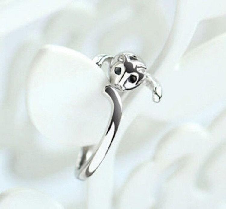 Ring (Katt)