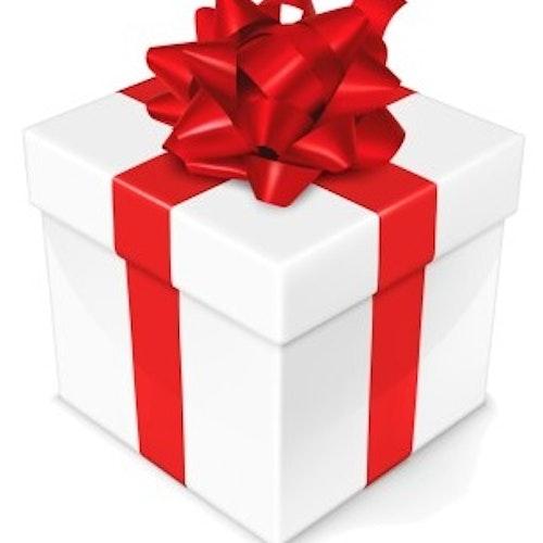 Vi skickar din present