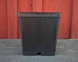 Fyrkantskruka 11cm 10kr