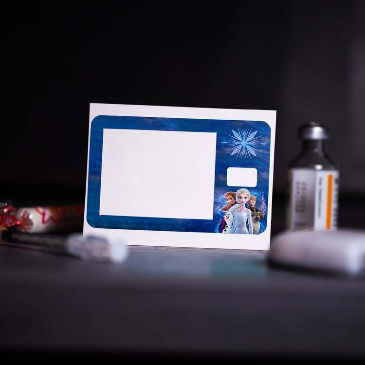 Sticker Tandem t:slim X2 - Frost