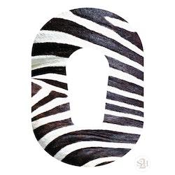 OverLay Patch Dexcom G6  - Zebra
