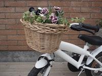 Cykelkorg