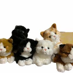 Katt 6 olika 21 cm