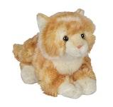 Katt med ljud orangevit